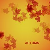 Autumn seasonal background. Eps10, vector illustration stock illustration