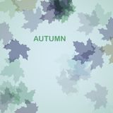 Autumn seasonal background Royalty Free Stock Photography
