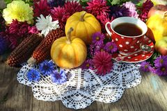 Still life with cup of tea, pumpkins, red corns and last autumn flowers on lace napkin stock image