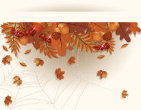 Autumn seasonal  banner Stock Photos