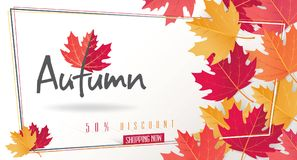Autumn Seasonal Discount Card e bandeira da Web do vetor Fotografia de Stock
