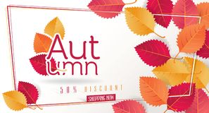 Autumn Seasonal Discount Card et bannière de Web de vecteur Photo libre de droits
