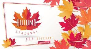 Autumn Seasonal Discount Card et bannière de Web de vecteur Image libre de droits