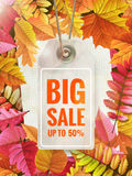 Autumn seasonal sale label. EPS 10 Stock Photography