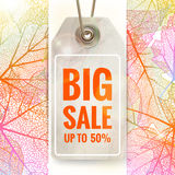 Autumn seasonal sale label. EPS 10 Royalty Free Stock Photos
