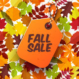 Autumn seasonal sale label. Vector illustration EPS 10 Royalty Free Stock Photography