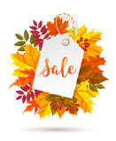 Autumn seasonal sale label. Vector illustration EPS 10 Royalty Free Stock Images
