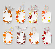 Autumn seasonal sale label. Vector illustration EPS 10. Autumn seasonal sale label. Autumn tags decorated yellow,broun and red leaves. Vector illustration EPS 10 vector illustration