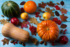 Autumn seasonal vegetables and fruits on the blue wooden backgro Stock Photo