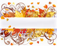 Autumn seasons card Royalty Free Stock Photo
