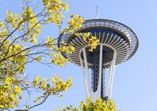 Autumn In Seattle Stockbild