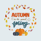 Autumn is second spring. Vector hand-painted poster. Modern calligraphy in vintage style. Hey autumn lettering in vector. Season greeting card Royalty Free Stock Photography