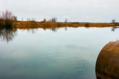 Autumn See mit einem Rohr Lizenzfreie Stockfotografie
