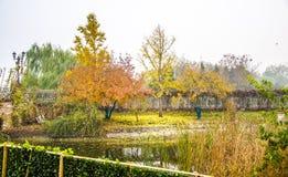 Autumn Senery av Peking royaltyfria bilder