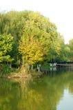 Autumn senery Royalty Free Stock Image