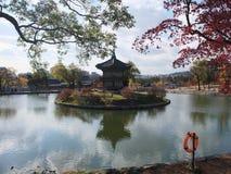Autumn Seoul Stockfotos