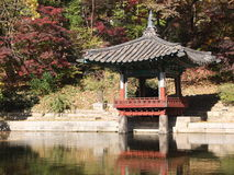 Autumn Seoul Royalty Free Stock Images
