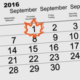 Autumn 2016 September 1 calendar. Maple Leaf back to school. Vector illustration Royalty Free Stock Photo