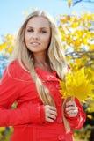 Autumn series Stock Photography