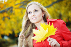 Autumn series Royalty Free Stock Photography