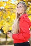 Autumn series Stock Photos