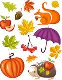 Autumn set. Vector illustration of a autumn set Stock Photos