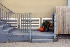 Autumn set. The view of a pumpkin and flowers on the stairs Royalty Free Stock Photo