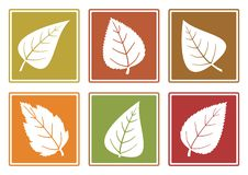 Autumn set of different leaf icons. Vector illustration royalty free illustration
