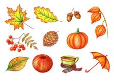 Autumn set on a white background stock illustration