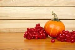 Autumn Setting Stock Photography