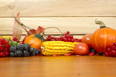 Autumn Setting Royalty Free Stock Images