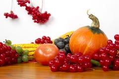 Autumn Setting Stock Image