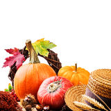 Autumn setting with colofrful pumpkins Royalty Free Stock Photography