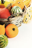 Autumn setting with various pumpkins and corn Royalty Free Stock Photography
