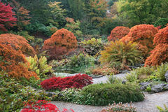 Autumn Shades Royalty Free Stock Photography