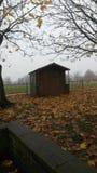 Autumn Shed Fotografie Stock Libere da Diritti