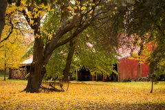 Autumn Shed Royalty Free Stock Photography
