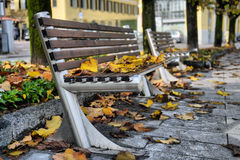 Autumn sheet on a bench Royalty Free Stock Image
