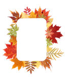 Autumn sheet by frame Royalty Free Stock Photography