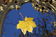 Autumn sheet of a maple on a mirror in sky reflexion. Reflexion in a mirror of yellow sheet of a maple against the dark blue sky Royalty Free Stock Image