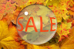 Autumn sheet and sale Royalty Free Stock Photography