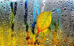 Autumn sheet on wet glass. Royalty Free Stock Photos