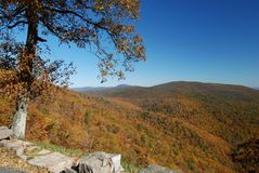 Autumn In Shenandoah Royalty Free Stock Photo