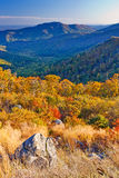 Autumn in Shenandoah National park Royalty Free Stock Photo