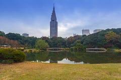 Autumn in the Shinjuku Park, Tokyo. Japan Royalty Free Stock Images