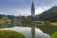 Autumn in the Shinjuku Park, Tokyo. Japan Stock Photo