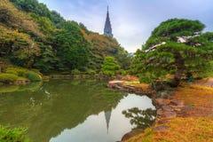 Autumn in the Shinjuku Park. Tokyo, Japan Stock Photos