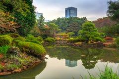 Autumn in the Shinjuku Park. Tokyo, Japan Stock Photography