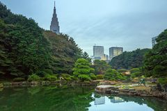 Autumn in the Shinjuku Park, Tokyo. Japan Stock Photos