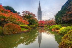 Autumn in the Shinjuku Park of Tokyo Stock Image